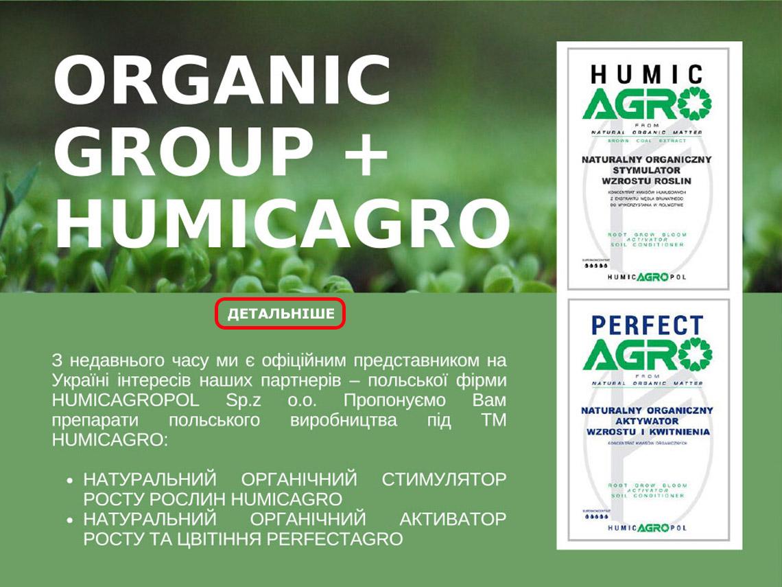 organic-13